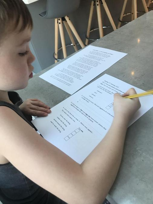 Lyle completing the reading comprehension activity