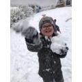 Sid having fun in the snow!