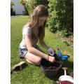 Ellie has been planting seeds.