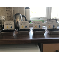 Wk 1 Seed growing investigation.