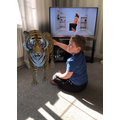 Did you know Leo had a pet TIGER?!!