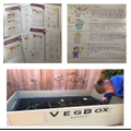 Euan has started growing his own vegetables!