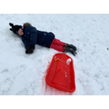 Sledging is hard work!