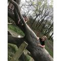 Jake and his sister exploring real trees!