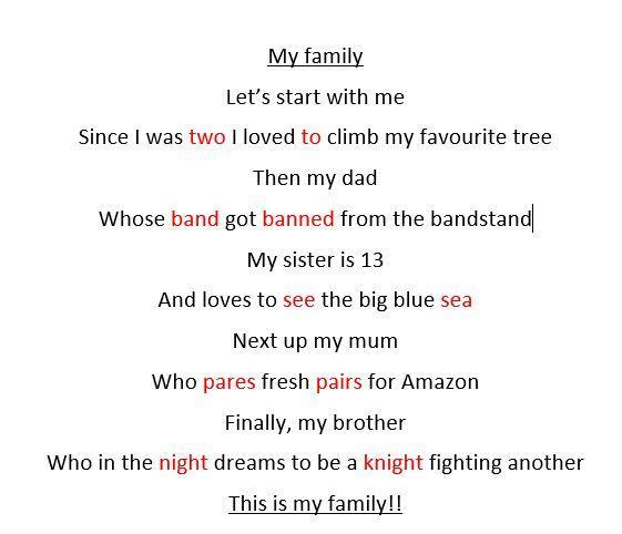 Amy's fabulous 'family' homophone poem