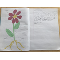 Poppy's flower labelling and admiration letter.