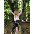 Annabelle has been climbing trees.