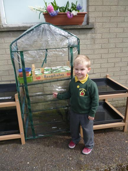 Our greenhouse helps the seeds grow faster.