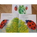 The Bad-Tempered Ladybird by Florence