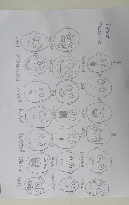 Well done Emman, I am impressed how many expressions you have drawn