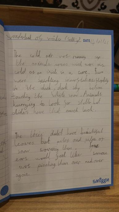 Wonderful vocabulary Younus. Super similes used. A range of verbs too.
