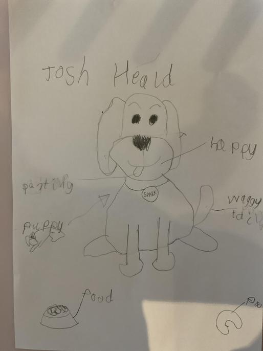 You have identified 6 processes. It is such a happy dog, Josh.