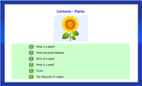Infant Encyclopedia - plants