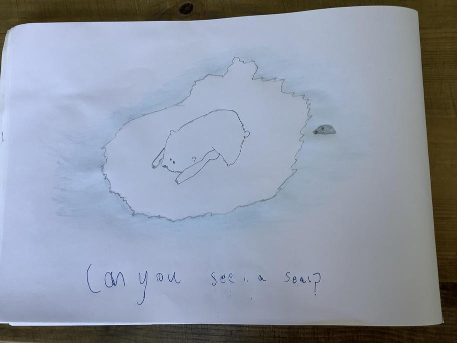 Yes I can see a seal, James, but has the polar bear spotted it?