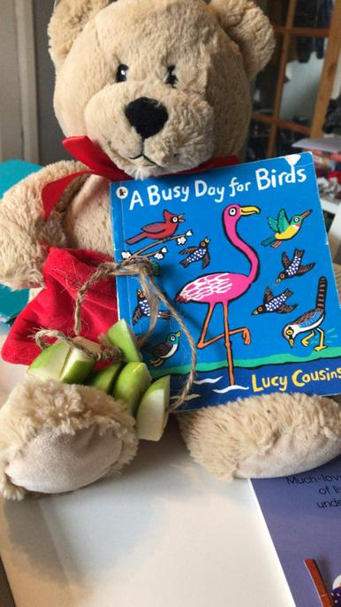 Libby the library bear is supporting the bird watch this weekend with her apple rings!