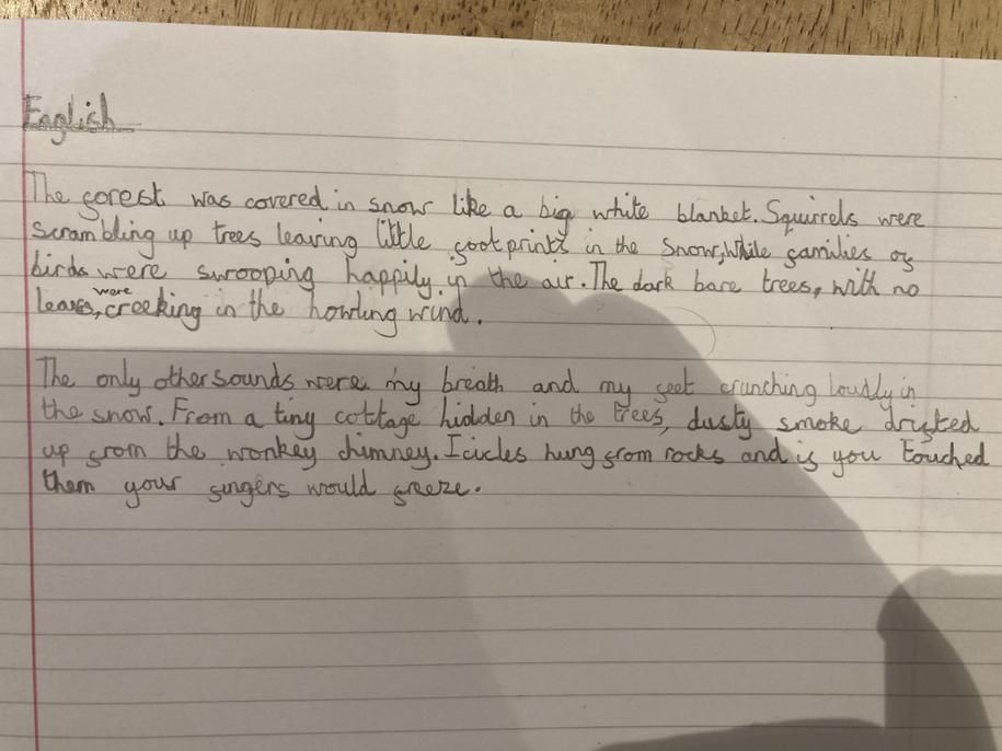 Some excellent vocabulary used here Eva, well done.