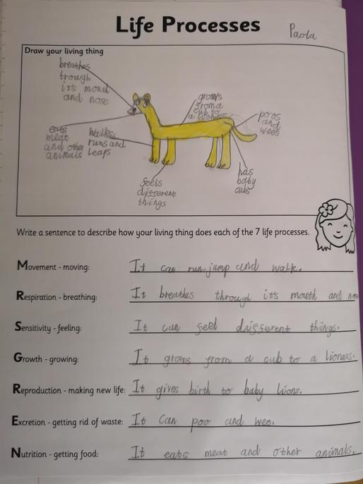 You have identified all 7 processes and labelled your picture. Well done Paola.