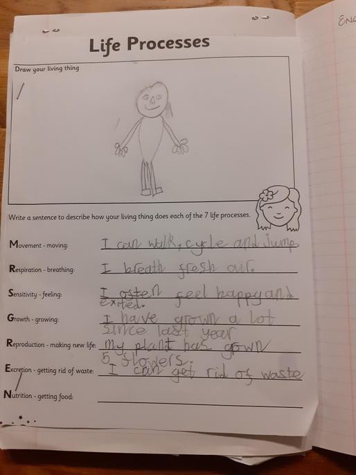 You have identified 5 of the 7 life processes. Well done Sarah.