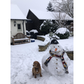 Miss Shoesmith's dog and snowman