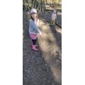 A woodland walk!
