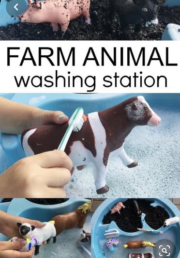 Washing farm animals (3)