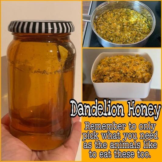Dandelion honey (12)