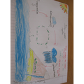 A Year 3 diagram of The Water Cycle.