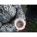 We went hunting for invertebrates in the rain!