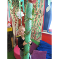 Jack and his Beanstalk