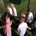 Reception have been on a walk to see what they could find in the local environment.