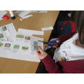 We learnt about carnivores, herbivores and omnivores too.
