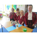 We checked to see if our Billy Goats could stand on our bridges for 1 minute!