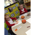 Pumpkin observational drawing