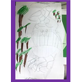 James' rainforest picture.