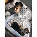 Harry's cats Tigger (mum) and kittens  -so cute