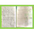 Bea's poem and rainforest facts!