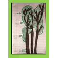 Vincent's rainforest tree picture!