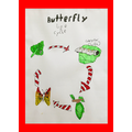 Quinn's picture of the butterfly cycle.