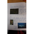 Excellent work on animal classification