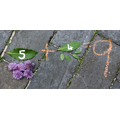 Make a natural number sentence