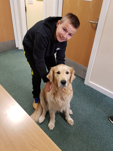 Looking after the school dog