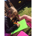Amelie working hard in the sunshine.