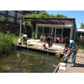 Pond- dipping