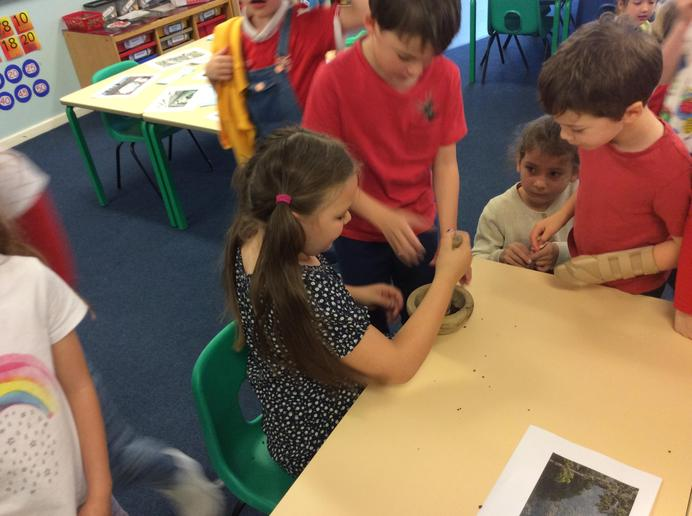 Coffee grinding with Year 2 and 3