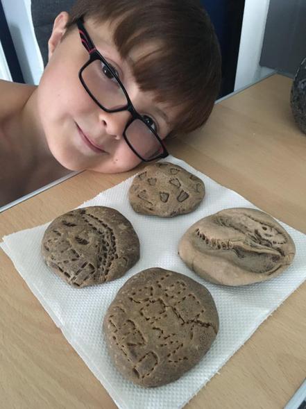 Rhys' fossils
