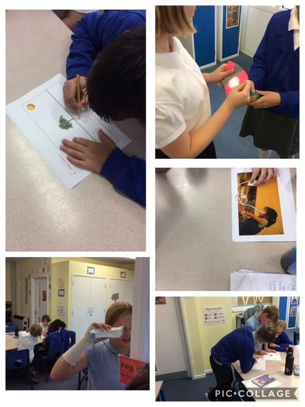 6IC exploring the properties of light in Science.