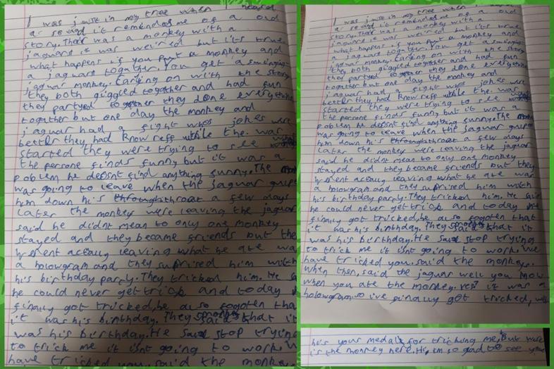 Brogan's rainforest story
