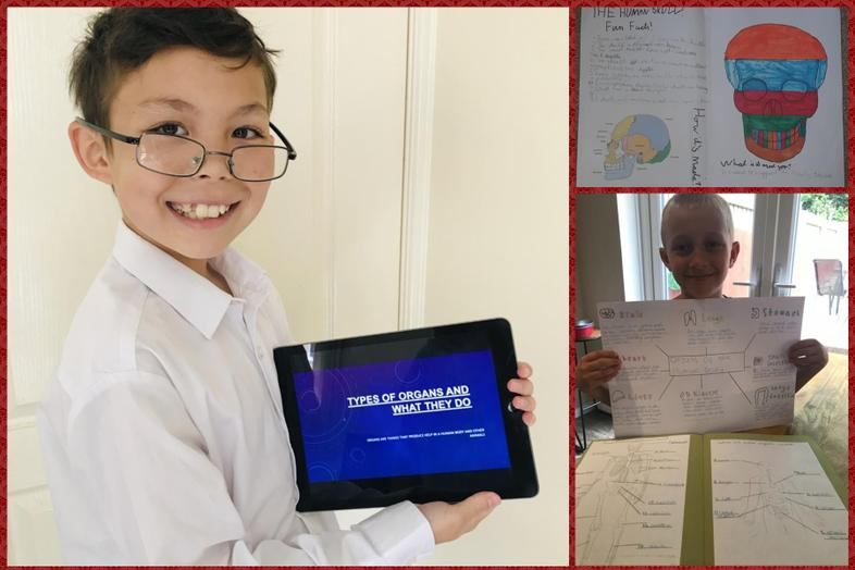 Professor Pook, William and Isaac with their work