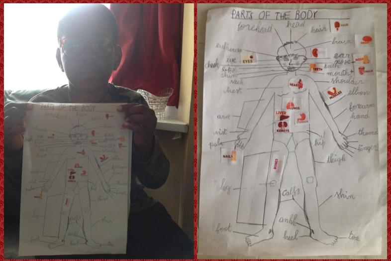 Augustin and his diagram of the human body
