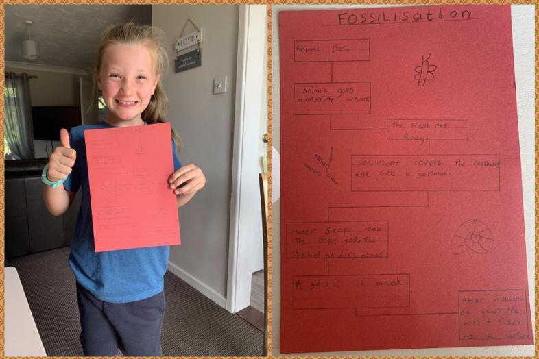 Lacie's fab fossilisation process